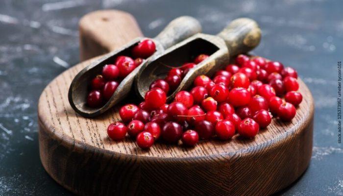Die Wirkung der Cranberry für einen gesunden Darm