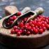 Inhaltstoffe und Wirkungen der Cranberry im darm